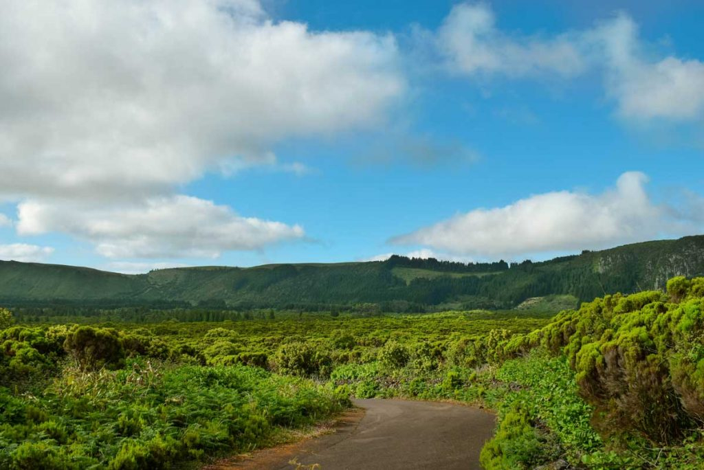 Azores hiking path