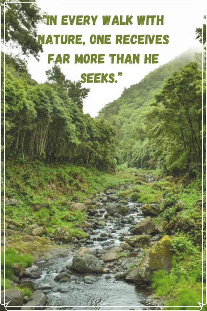 Quotes Hiking